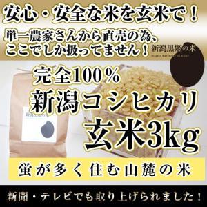 栄養豊富【玄米3kg】新潟黒姫の米【安心・安全な米で健康食】3|niigatanokome
