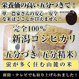 栄養豊富【五分づき(五分精米)5kg】新潟黒姫の米【安心・安全な米で健康食】|niigatanokome