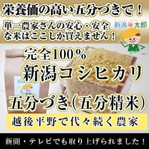 栄養豊富【五分づき(五分精米)5kg】新潟米太郎【安心・安全な米で健康食】|niigatanokome