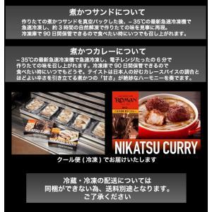 東京 八王子名物  冷凍の煮かつカレー ロース4人前 冷凍カレー→冷蔵商品を一緒にご注文の場合送料別途(追加送料につきましては後ほどメールいたします)|nikatsusand|05