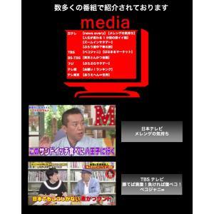 東京 八王子名物  冷凍の煮かつカレー ロース1人前 →冷蔵商品を一緒にご注文の場合送料別途(追加送料につきましては後ほどメールいたします) nikatsusand 05