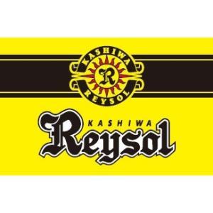 2017 Jリーグ カード チームエディション・メモラビリア 柏レイソル BOX|niki
