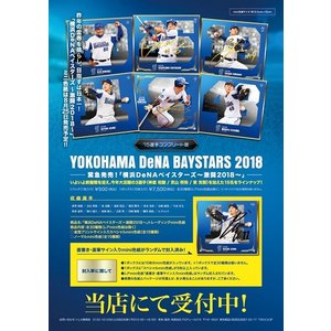 球団公認「横浜DeNAベイスターズ〜激闘2018〜」トレーディングmini色紙 BOX|niki|02