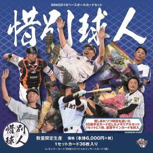BBM 2018 ベースボールカードセット 「惜別球人」(送料無料)|niki