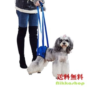 介護用 歩行補助ハーネス 後足用 歩行サポート 老犬介護 シニア 介護用品 犬用 メール便送料無料