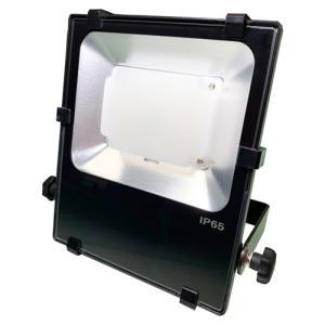 日機 LED投光器 IP65 雷対策 30W NLFL30-AC (メーカー直販)|nikki-ys