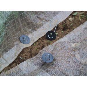 黒丸君 4穴 20cm 200組 (シート押さえに)|nikkoseed2012|03