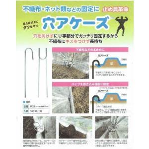 穴アケーズ(長さ250mm) 100本|nikkoseed2012|04