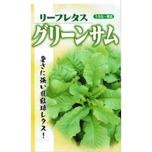 生育が早く直播の場合は播種後35日で収穫可能。生育適温15〜28℃、抽苔遅く厳暑期前後に収穫する。
