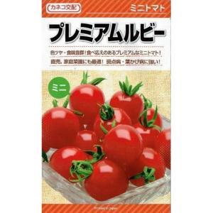 カネコ種苗 ミニトマト プレミアムルビー 約18粒 nikkoseed2012