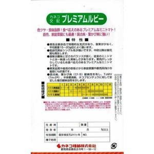 カネコ種苗 ミニトマト プレミアムルビー 約18粒 nikkoseed2012 02