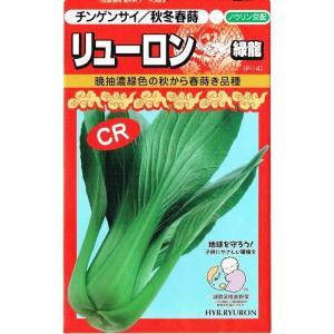草姿は立性で葉色は濃緑色。照りがあり葉柄も鮮緑色で光沢がある。耐寒性があり、寒さによるカッピングや小...