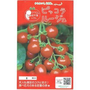 濃赤色ミニトマト、高糖度(9〜11度)。果肉が粘質でしっかりとしており濃厚なコクが凝縮されている。早...