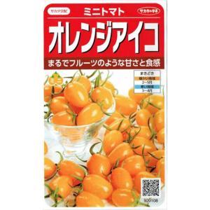 サカタのタネ ミニトマト オレンジアイコ 約13粒