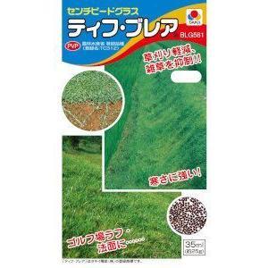 タキイ種苗 芝 センチピードグラス ティフブレア 20ml