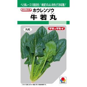 タキイ種苗 ホウレンソウ ほうれん草 牛若丸 30ml