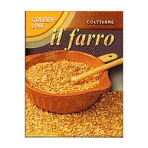 中早生種。古代小麦として知られ、普通小麦の原種にあたる小麦です。ヨーロッパではスペルト小麦を使用した...