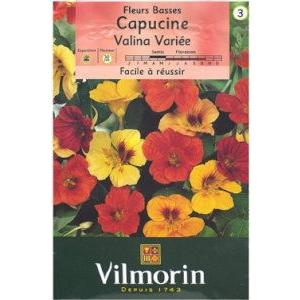 草丈30cm程度で這性、赤、黄色、クリーム色、オレンジ色などの種子がミックスされています。ナスタチウ...