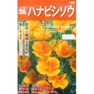 花菱草 カリフォルニアポピー 1dl