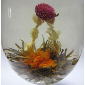 工芸茶5種類セット個別包装(各1袋 計5個) ジャスミン茶ベース|nikkou-t