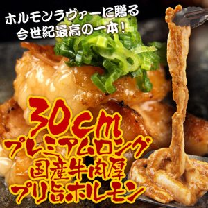 ロングカット国産牛小腸!肉厚プリ旨 味噌漬ホルモン【500g 約2-3人前】[ 焼き肉 / 焼肉 / BBQ / バーベキュー ]|niku-donya