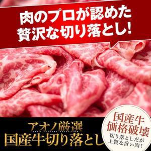 万能食材!とっても贅沢な国産牛切り落とし【500g】[ おかず / お弁当 / ストック / 買い置き ]|niku-donya