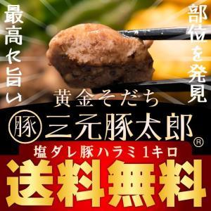 【送料無料】黄金そだち 三元豚太郎(R) 塩ダレ豚ハラミ【1kg(500g×2パック)約4-6人前】[ 焼き肉 / 焼肉 / BBQ / バーベキュー ]|niku-donya