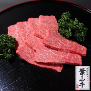 葉山牛特上赤身焼肉用 500g 送料無料|niku-fujiya