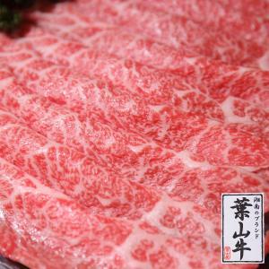 葉山牛特上ロースしゃぶしゃぶ用肉 500g 送料無料|niku-fujiya