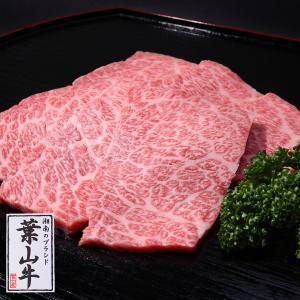 葉山牛特上ロース焼肉セット 500g 送料無料|niku-fujiya