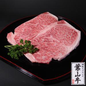 葉山牛サーロインステーキセット 200g×3枚 送料無料|niku-fujiya