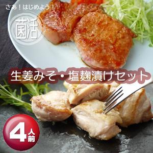 肉工房みぞたの生姜みそ・塩麹漬けセット(4人前)|nikukobo-mizota-y