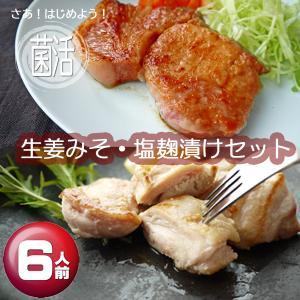 肉工房みぞたの生姜みそ・塩麹漬けセット(6人前)|nikukobo-mizota-y