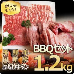 肉 牛肉 焼肉 バーベキューセット 飛騨牛 国産豚肉 牛タン 1.2kg 約4〜5人前 和牛 牛肉 ...