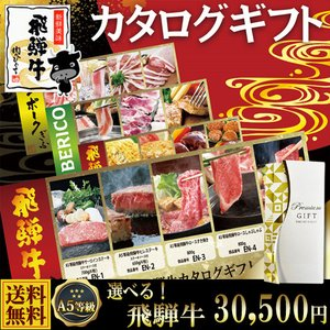 ギフト 肉 A5等級 飛騨牛 カタログギフト 30500円 御礼 御祝 贈答 引出物 内祝 nikunohiguchi-yafuu