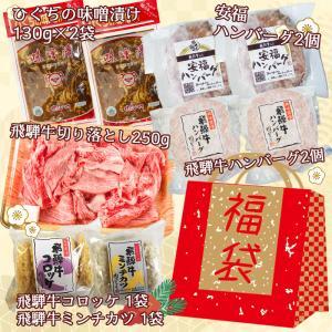 和牛 肉 新春 肉のひぐちの福袋 10000円 限定 詰め合わせ 6種類 惣菜 飛騨牛 送料無料 nikunohiguchi-yafuu