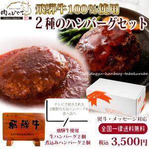 父の日 プレゼント 肉 牛肉 飛騨牛 2種のハンバーグ食べ比べセット 生ハンバーグ 煮込みハンバーグ 御祝 内祝 御礼|nikunohiguchi-yafuu