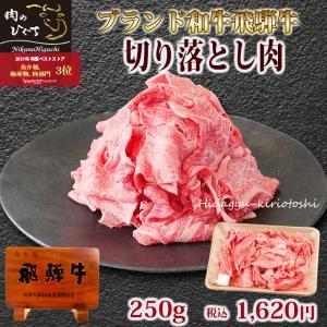 肉 牛肉 訳あり 飛騨牛 切り落とし肉 250g すき焼き わけあり お買得 牛小間 こま切れ ブランド和牛|nikunohiguchi-yafuu