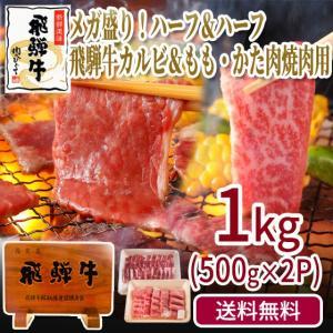 焼肉 肉 牛肉 福袋 飛騨牛 カルビ500g&もも・かた500g バーベキューセット メガ バーベキュー BBQ 赤身 お取り寄せ グルメ|nikunohiguchi-yafuu