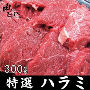 牛肉 特選ハラミ 300g BBQ バーベキュー 焼肉