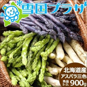 【予約】アスパラ 北海道産 アスパラ3色セットA(緑、白、紫) S〜2Lサイズ 計900g アスパラガス 送料無料 ギフト