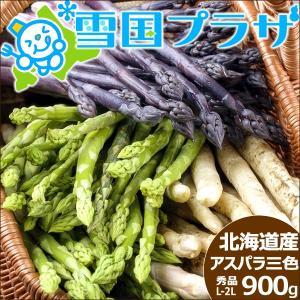 【予約】アスパラ 北海道産 アスパラ3色セットB(緑、白、紫) L,2Lサイズ 計900g アスパラガス 送料無料 ギフト