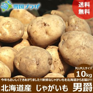 じゃがいも 北海道 男爵 10kg 新じゃが ジャガイモ お取り寄せ 産直