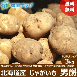 じゃがいも 北海道 男爵 3kg 新じゃが ジャガイモ お取り寄せ 産直