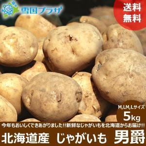 じゃがいも 北海道 男爵 5kg 新じゃが ジャガイモ お取り寄せ 産直