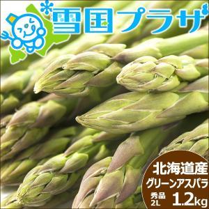 【予約】アスパラ 北海道産 グリーンアスパラ 極太 2Lサイズ 1.2kg アスパラガス 送料無料 ギフト