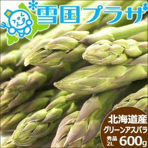 【予約】アスパラ 北海道産 グリーンアスパラ 極太 2Lサイズ 600g アスパラガス 送料無料 ギフト