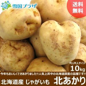 じゃがいも 北海道 北あかり 10kg 新じゃが ジャガイモ いも 芋 お取り寄せ 産直