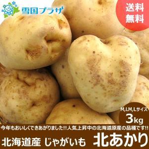 じゃがいも 北海道 北あかり 3kg 新じゃが ジャガイモ いも 芋 お取り寄せ 産直