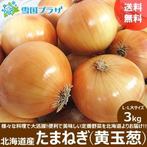 たまねぎ 北海道  黄玉葱 3kg 新玉ねぎ タマネギ 玉葱 お取り寄せ 産直